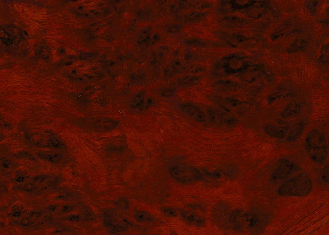 #11571 Rosewood Burl Gloss
